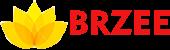 BRZEE Academy